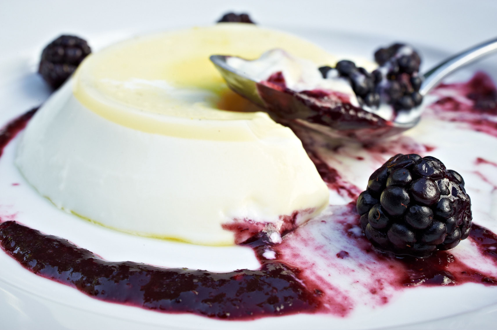 Ragazza, Lemon Blackberry Panna Cotta