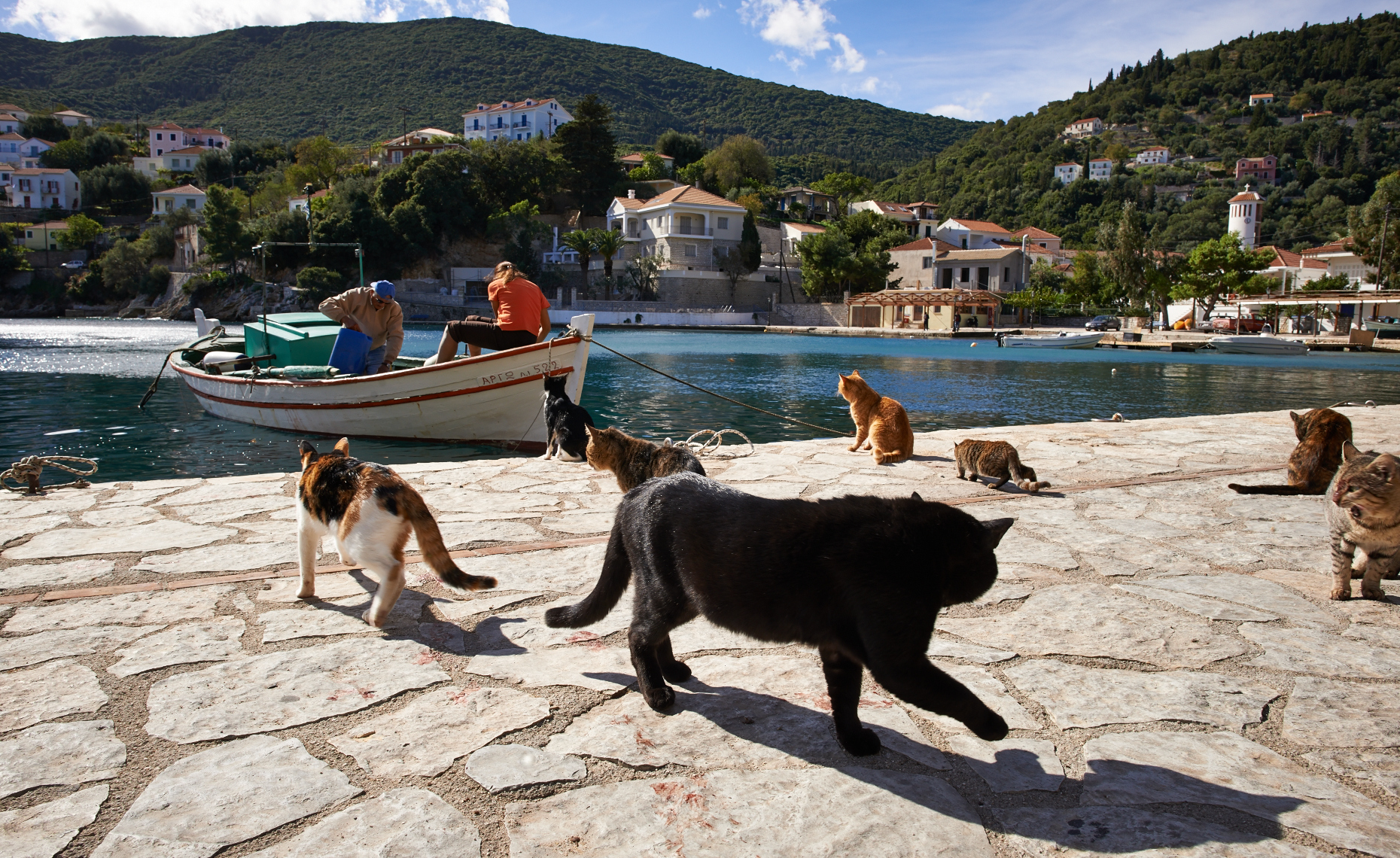 Cats & Fishermen, Greece
